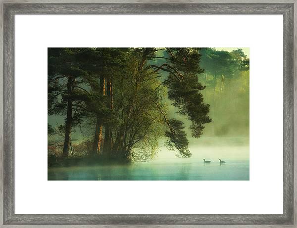 Dutch Fen Framed Print