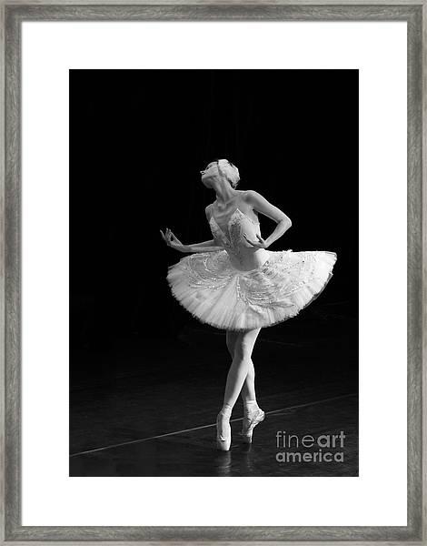 Dying Swan 3. Framed Print