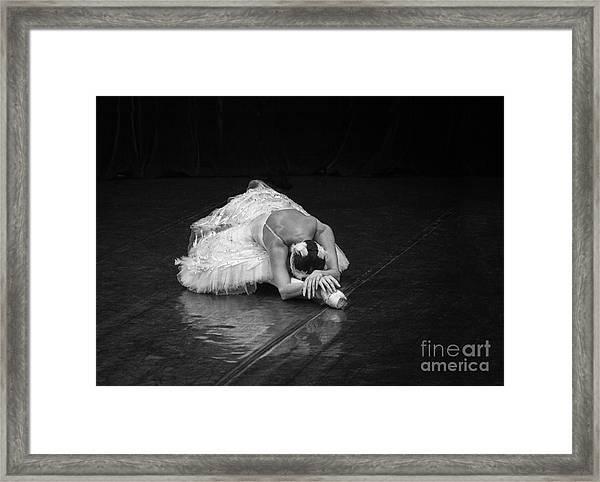Dying Swan 4. Framed Print