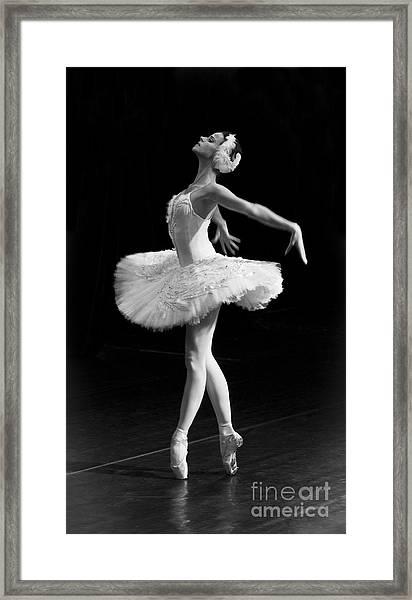 Dying Swan I. Framed Print