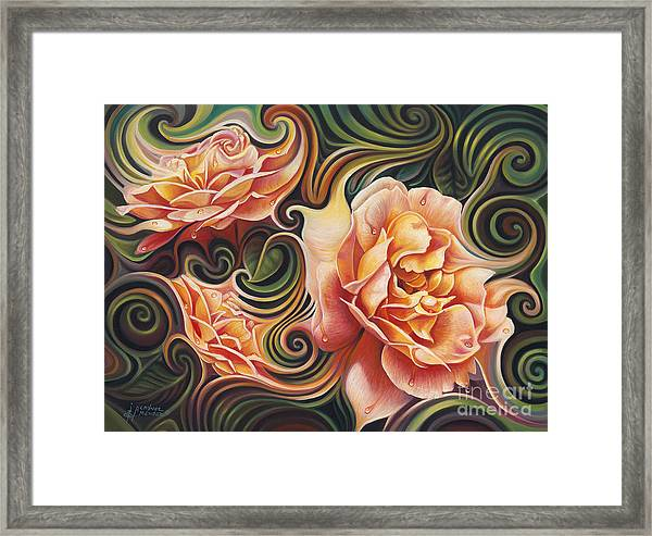 Dynamic Floral V  Roses Framed Print