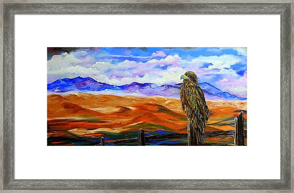 Eagles Watch Framed Print