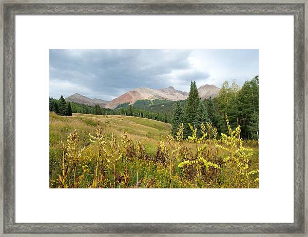 Early Autumn In The San Juans -  Mount Wilson And Wilson Peak Framed Print
