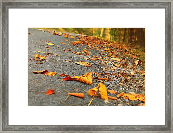 Framed Print featuring the photograph Early Autumn Road by Candice Trimble