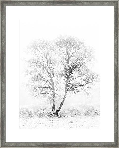 Early In The Morning Framed Print by Greetje Van Son