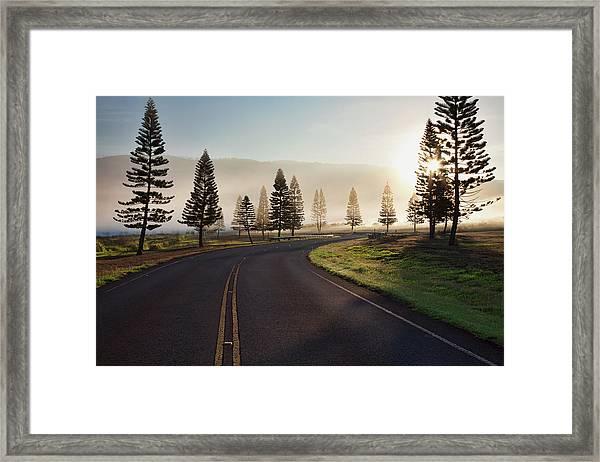 Early Morning Fog On Manele Road Framed Print