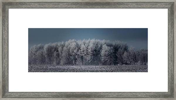 Early Morning Frost Framed Print by Sarah Boyd