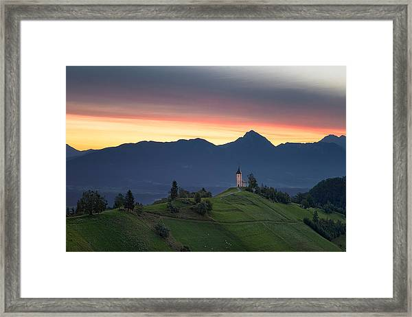 Early Morning Pasture Framed Print
