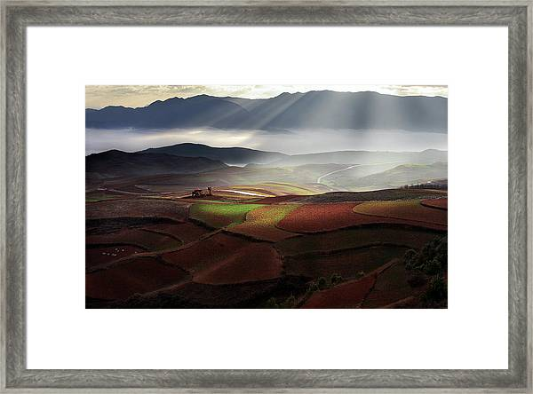 Early Spring On Red Land Framed Print
