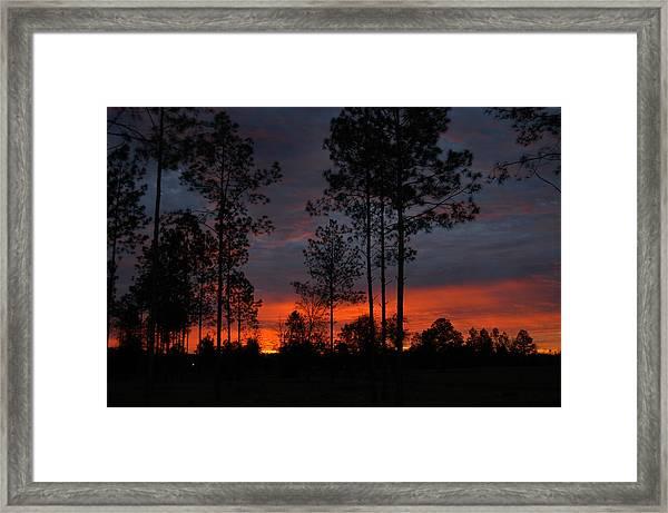 Early Sunrise Framed Print