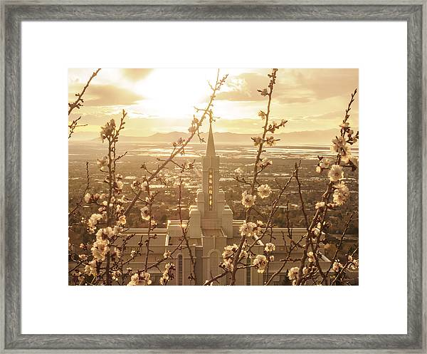 Earth Renewed Framed Print