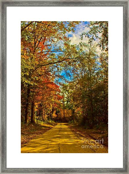 East Texas Back Roads Hdr Framed Print