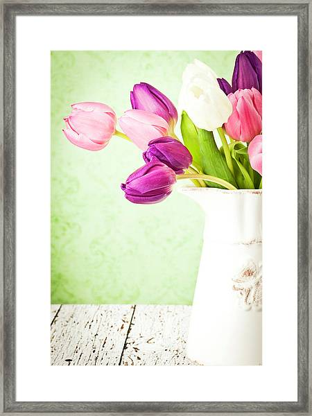 Easter Tulips And Copy Space Framed Print
