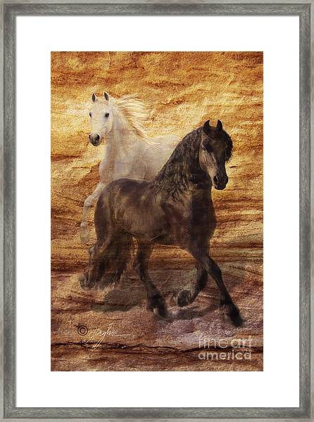 Ebony And Ivory Framed Print