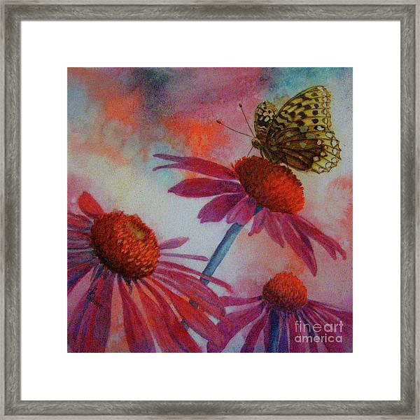 Echinacea Fritillaria Framed Print