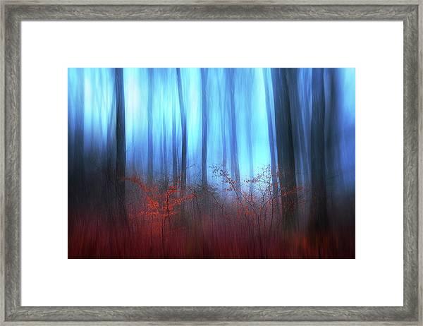 Eerie Woods Framed Print