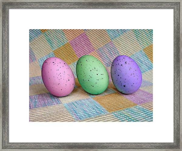 Easter Egg Roll Framed Print