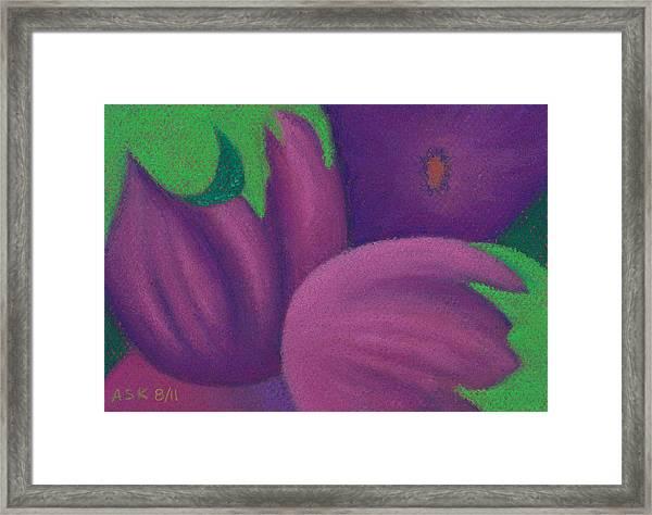 Eggplants Framed Print