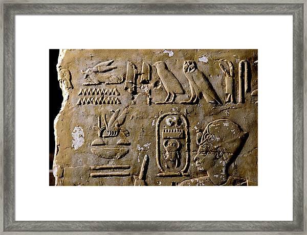 Egyptian Bee Hieroglyph Framed Print