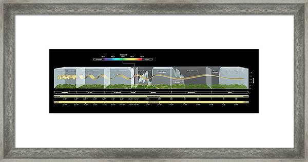 Electromagnetic Spectrum Framed Print