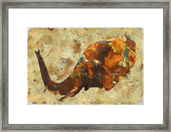 Elephant 2- Happened At The Zoo  Framed Print