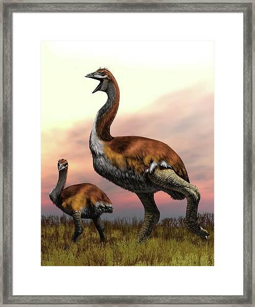Elephant Birds Framed Print by Jaime Chirinos/science Photo Library