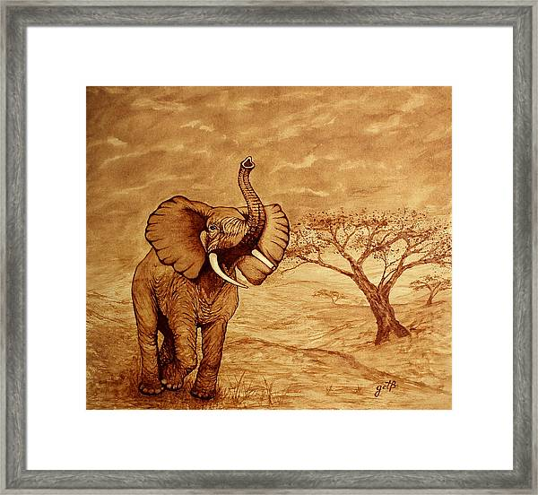 Elephant Majesty Original Coffee Painting Framed Print