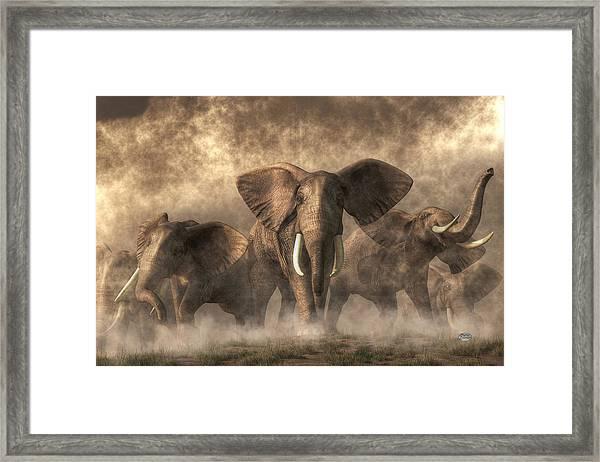 Elephant Stampede Framed Print