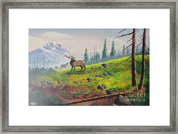 Elk In The Mist Framed Print