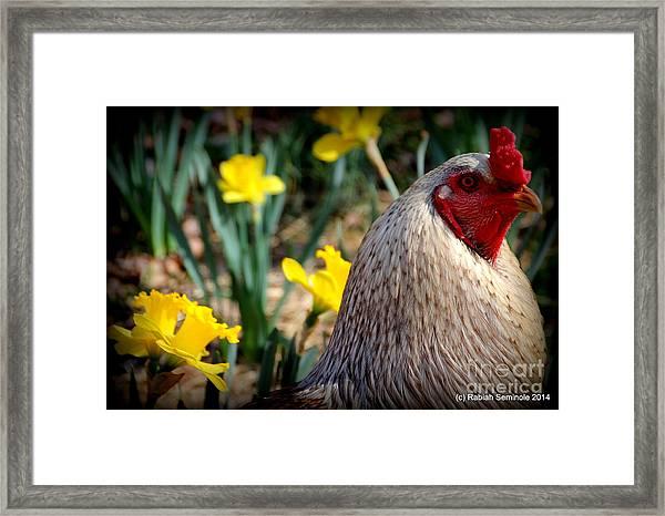 Elliot In The Garden Framed Print