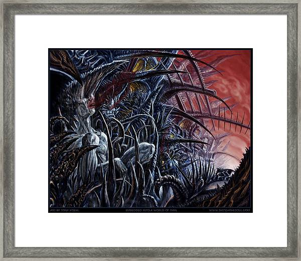 Embedded Into A World Of Pain Framed Print