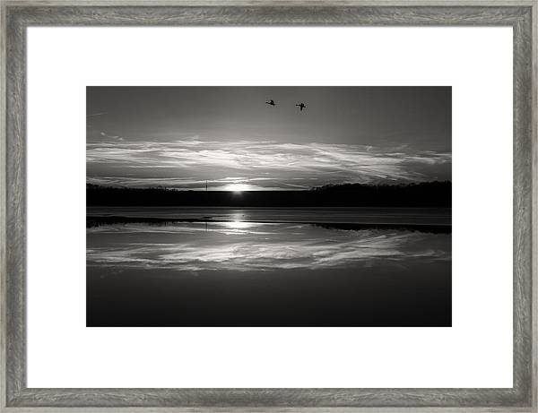 Ember Sunset Framed Print by Diana Boyd