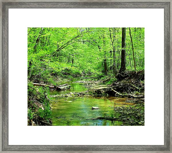 Framed Print featuring the photograph Emerald Creek by Candice Trimble