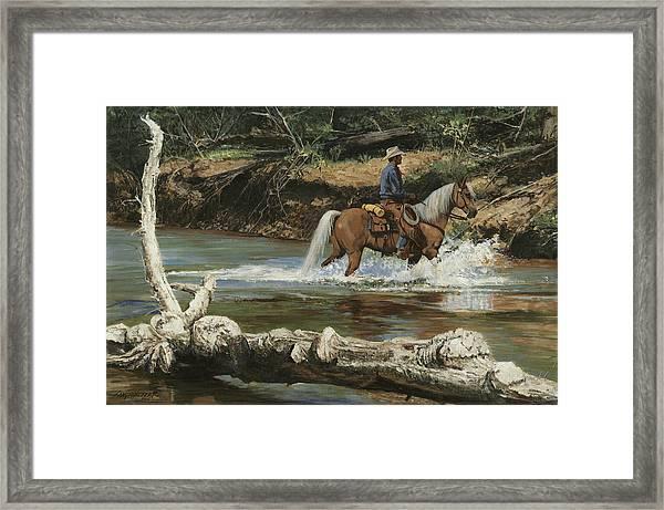 Palomino Crossing Big Creek Framed Print
