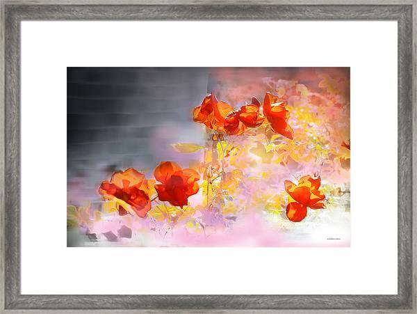 En La Pared Framed Print