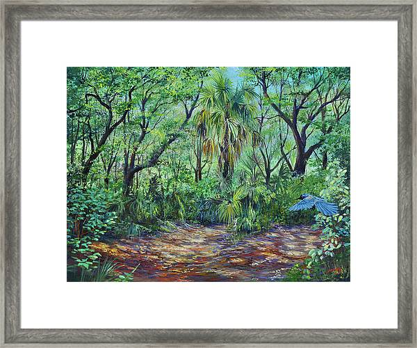 Enchanted Clearing Framed Print