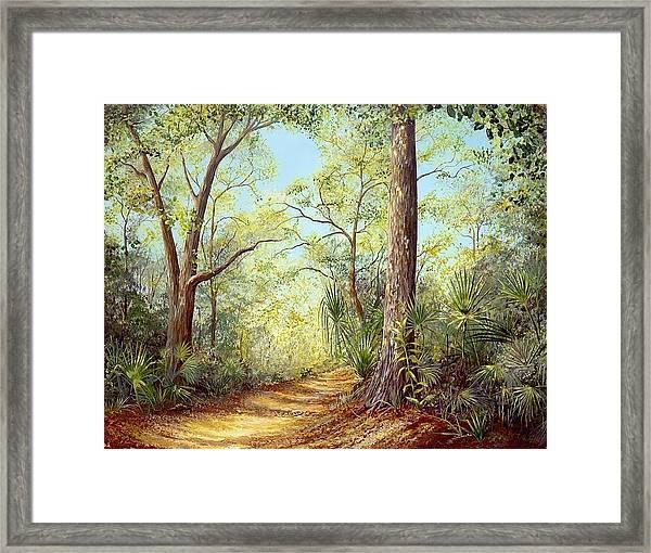 Enchanted Trail Framed Print