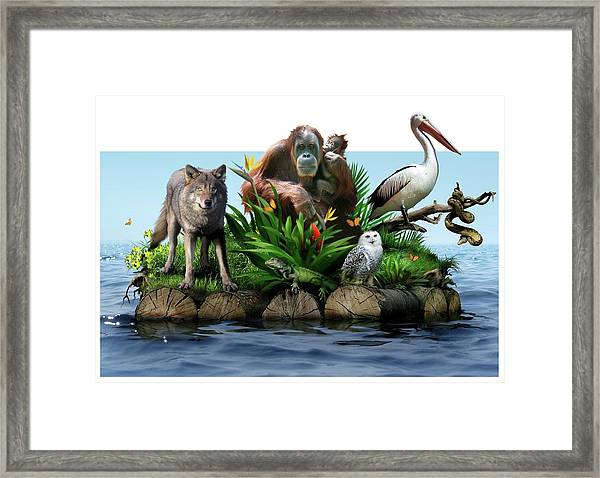 Endangered Animals Framed Print