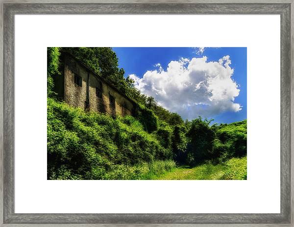 Enveloping Vegetation On Abandoned Houses - Vegetazione Avviluppante Sulle Case Abbandonate Framed Print