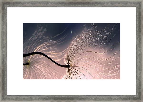 Ephemeral Waves... Framed Print