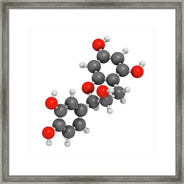 Epicatechin Chocolate Flavonoid Molecule Framed Print
