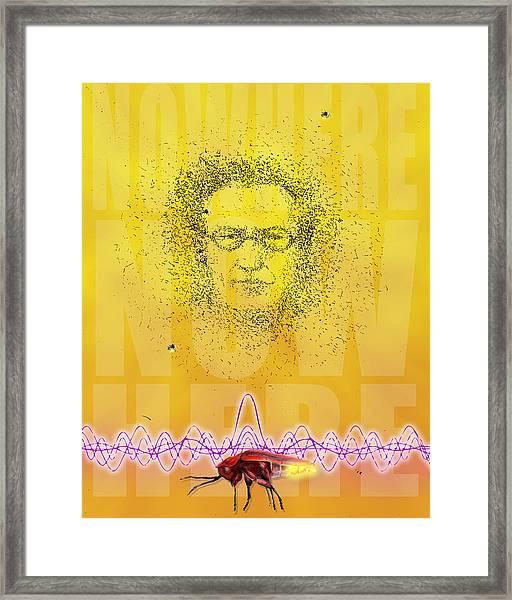 Erwin And The Quantum Firflies Framed Print