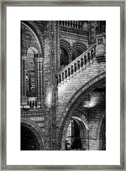 Escheresq Bw Framed Print