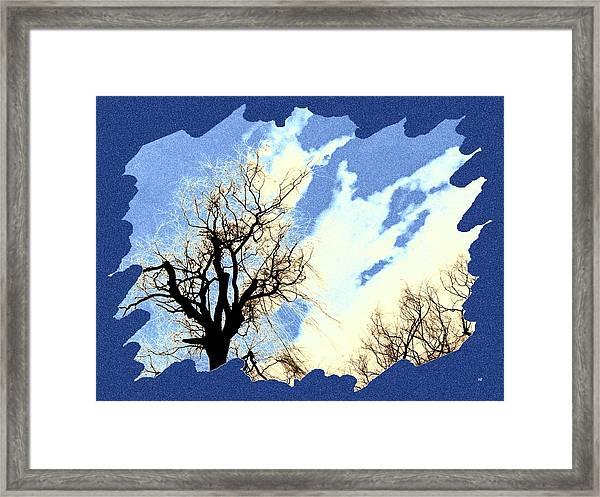 Essence Of Winter Framed Print