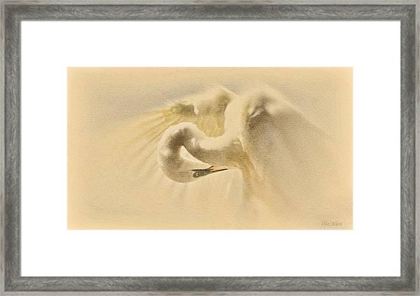 Ethereal Egret Framed Print