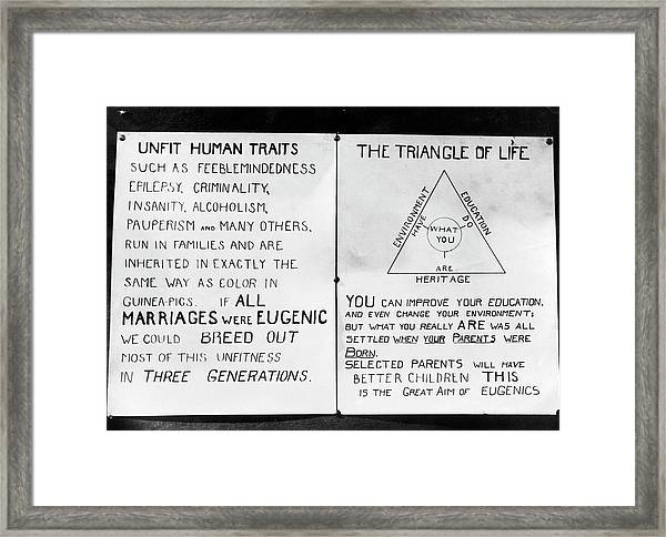 Eugenics Posters At Public Fair Framed Print by American Philosophical Society