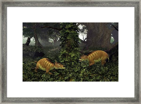 Eurohippus Prehistoric Mammals Framed Print by Walter Myers