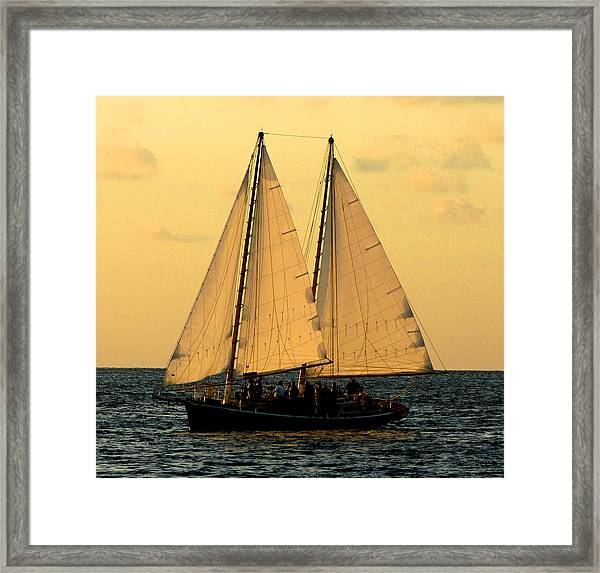 Framed Print featuring the photograph More Sails In Key West by Bob Slitzan