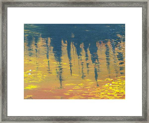 Evening At The Pond Framed Print