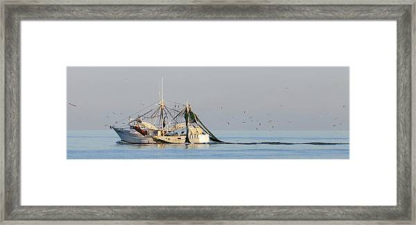 Evening Catch Framed Print